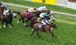horse racing jockey trevor mccarthy
